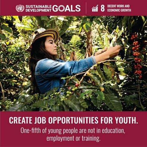 sustainable development job youth aifarmtech.com
